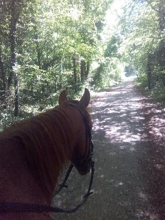 Balade et randonnée